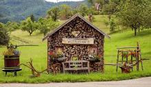 Newsletter Grannies - Notruf vom Rande des Schwarzwalds