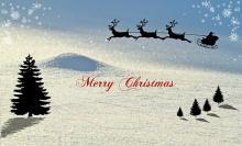 Newsletter Grannies - Frohes Fest - unser Weihnachtsgeschenk an Sie...