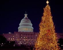 Newsletter Grannies - Weihnachtszauber in Washington D.C.