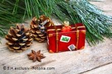 Newsletter Grannies - Our Christmas present to you: 15% discount on all memberships!